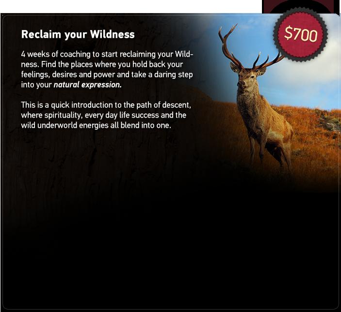 coaching-reclaim-wildness